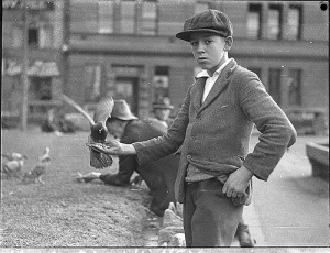 017 Boy with pigeons at [Circular] Quay, Sydney, 2261935  by Sam Hood