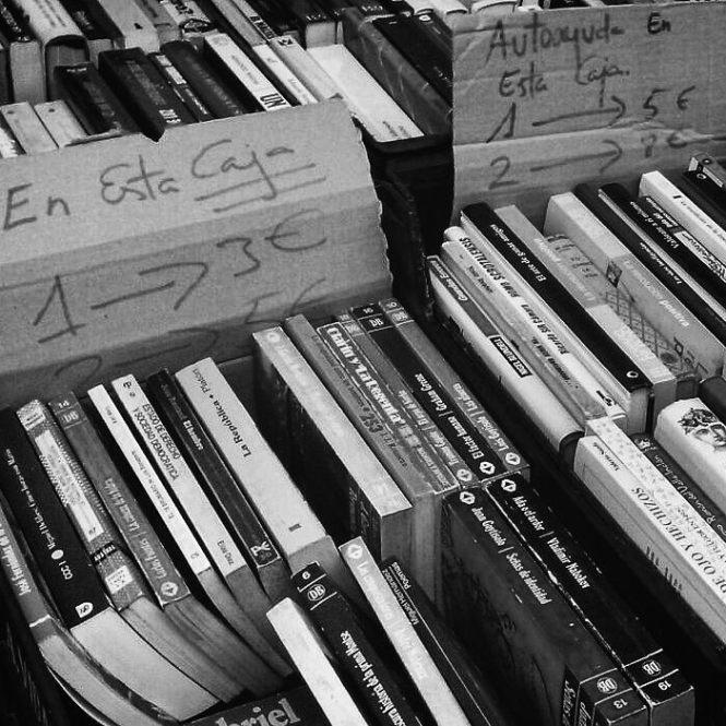 fontan-libros